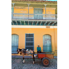 Horse Cart in Trinidad