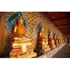 Riverside Buddhas Bangkok